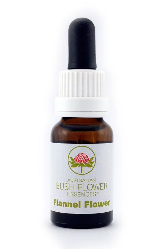 Australian Bush Flower Essence© Flannel Flower 15 ml