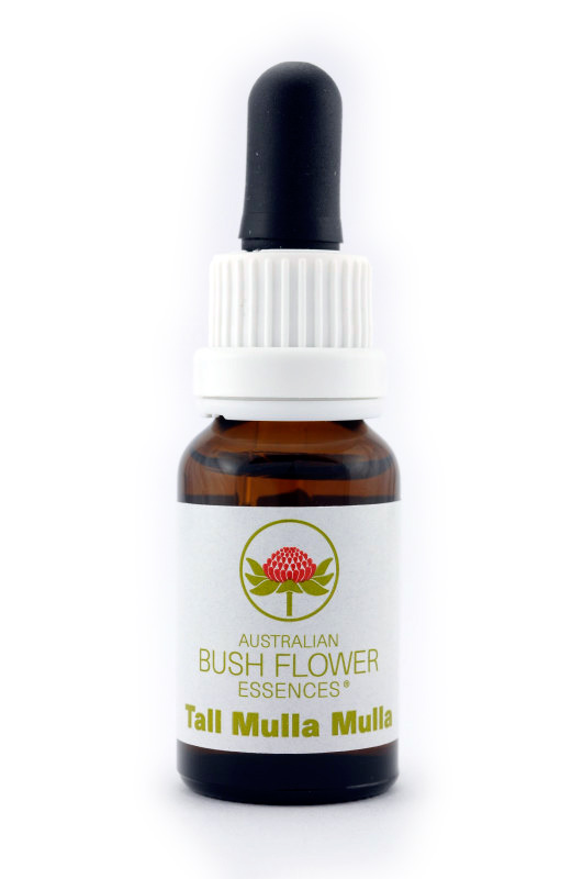Australian Bush Flower Essence© Tall Mulla Mulla 15 ml