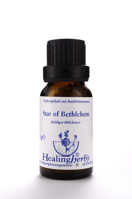 Star of Bethlehem Globuli 15 g Healing Herbs G29