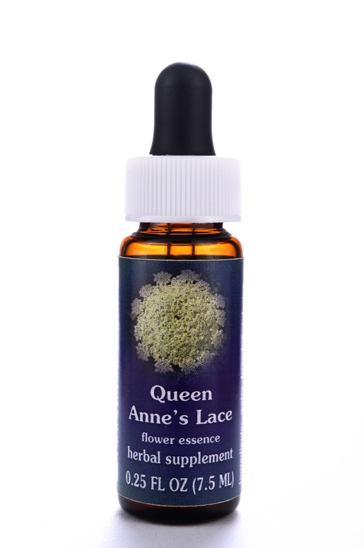FES Quintessentials© Bltenessenz Queen Anne's Lace 7,5 ml