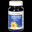 Topinambur-Aminosäure-Vitamin GPH Kapseln