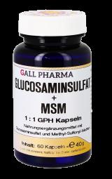 Glucosaminsulfat + MSM 1:1 GPH Kapseln