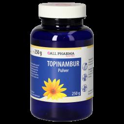 Topinambur GPH Pulver