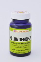 Holunderbeer 350 mg GPH Kapseln