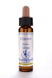 Cerato 10 ml Healing Herbs 105