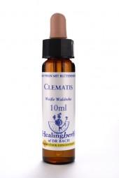 Clematis 10 ml Healing Herbs 109