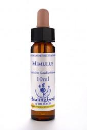 Mimulus 10 ml Healing Herbs 120