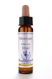 Mustard 10 ml Healing Herbs 121