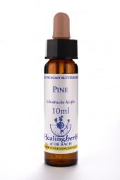 Pine 10 ml Healing Herbs 124