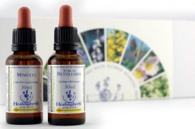 Healing Herbs Komplett-Set 40 x 30 ml 243